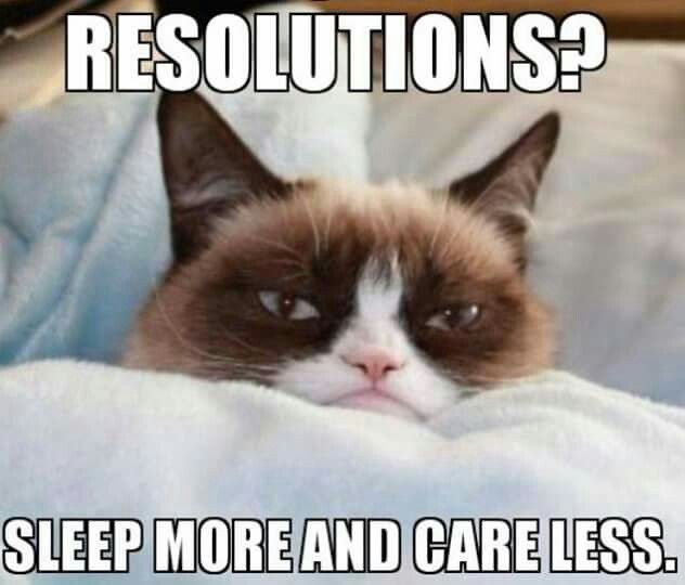 New year resolution cat meme